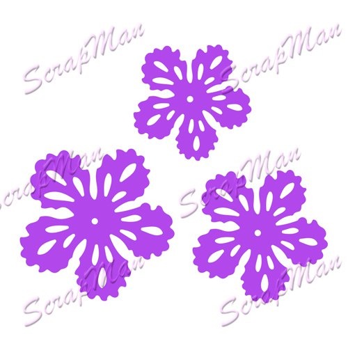 "Set of Dies ""Flowers-2"" ScrapMan"